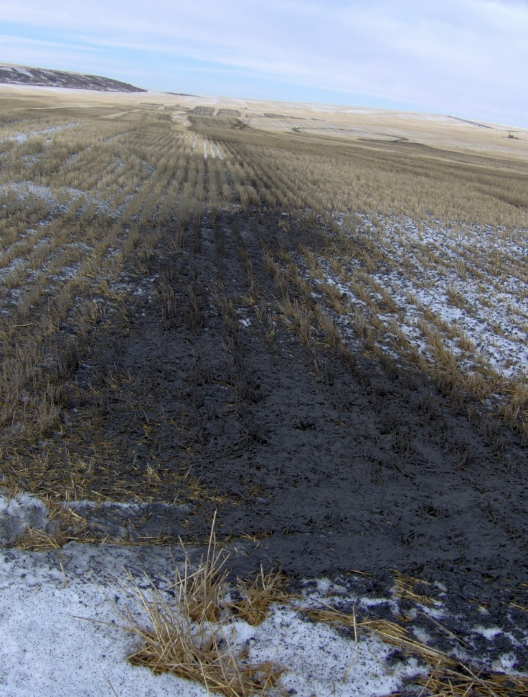This image has an empty alt attribute; its file name is 2012-11-18-AM-EnCana-dumping-heavy-facing-west-towards-05-14-the-Encana-gas-well-that-repeatedly-fractured-dirctly-into-Rosebud-drinking-water-aquifers-in-2004.jpg