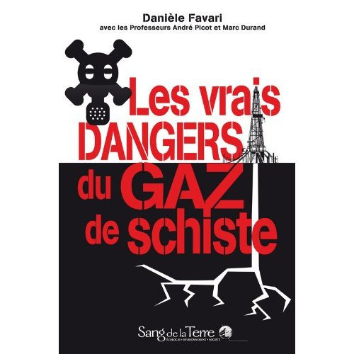 2013 Book The real dangers of shale gas