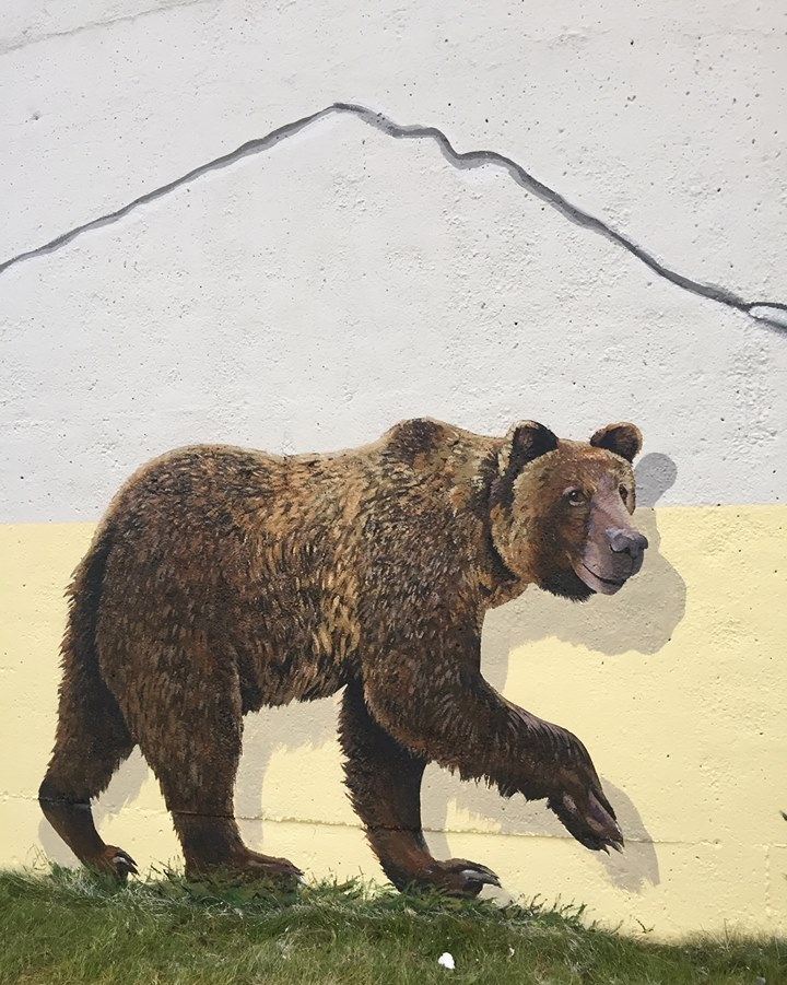 2015 Chevron funded Fox Creek water tower mural, did fracking crack it, close up frac cracks w bear
