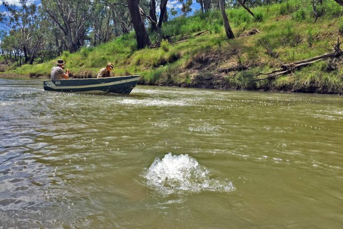 2016 Methane bubbling in Condamine River 'intensifying'